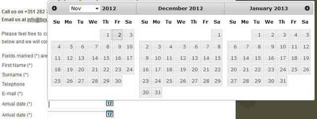 Date Range Picker in RSForm!Pro